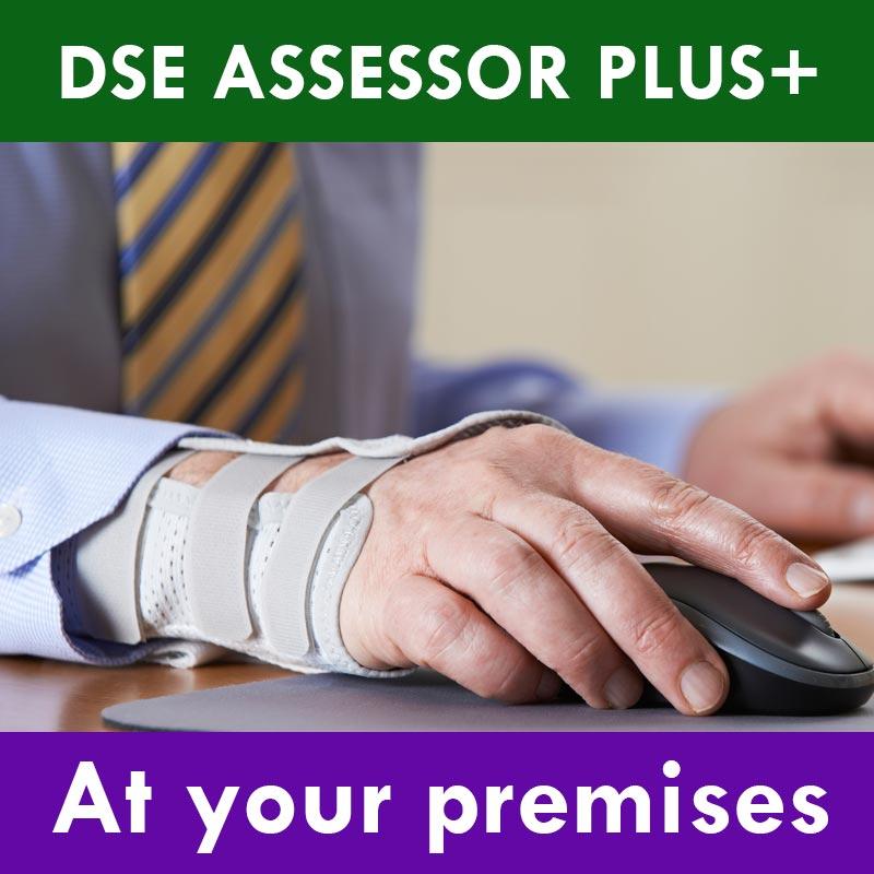 DSE Assessor Training Plus+ - On Premise [10 Delegates]
